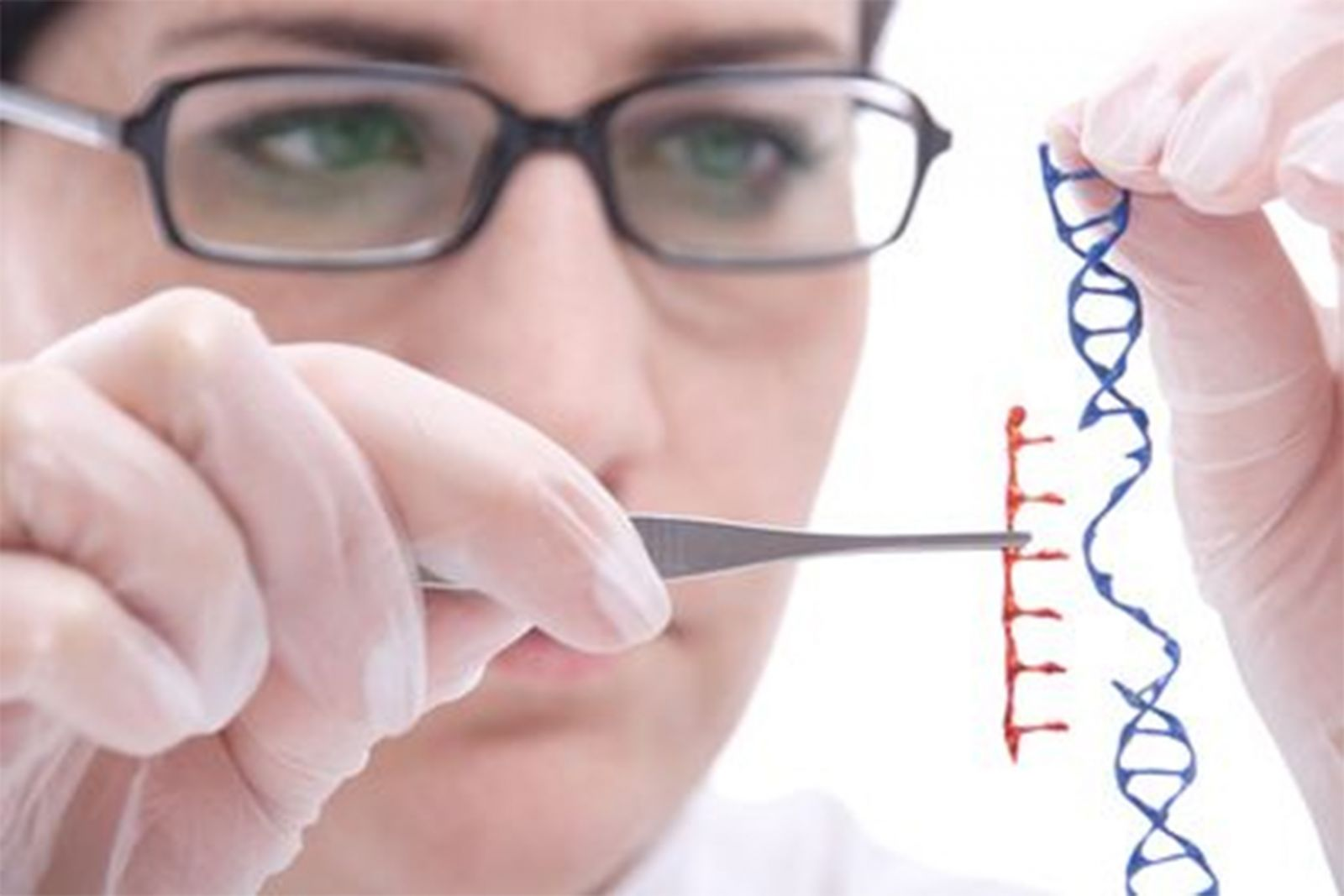 """Genetic engineering; the scientists are playing """"God"""""""
